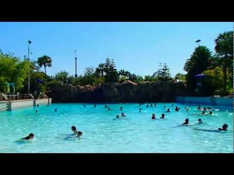 № 2338 США Любимая Моя Мокрая AQUATICA Orlando Fl aquatica orlando video